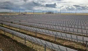 Solar Trackers on an Overcast Day